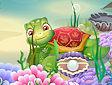 <b>Tartarughina felice - New turtle care