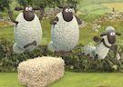 <b>Pecora Shaun alieni - Shaun the sheep alien athletics