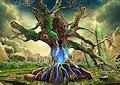 <b>Foresta delle meraviglie - Forest of wonders