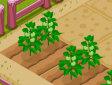<b>Gestisci la fattoria - New farmer 2