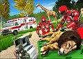 <b>Supereroi soccorso veterinario - Real doctor robot animal rescue