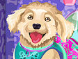 <b>Outfit 4 zampe - Design your doggie outfit