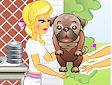<b>Jennifer Rose cuccioli - Jennifer rose puppy grooming