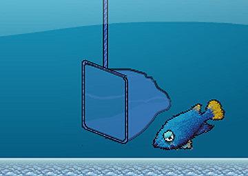 Gioco pesci in acquario for Immagini pesciolini