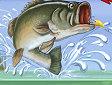 <b>Campionato di pesca - Fishing champion