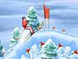 <b>Nitro ski