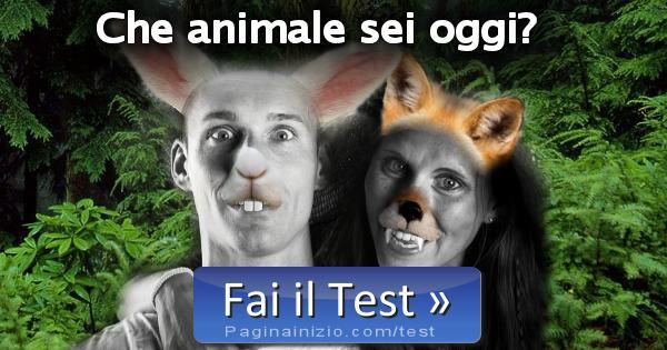 Test che animale sei oggi for Test quale animale sei